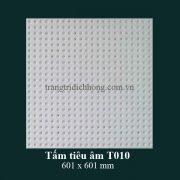 tam-tieu-am-t010-601x601mm