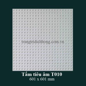 tam-tieu-am-t010-601x601mm