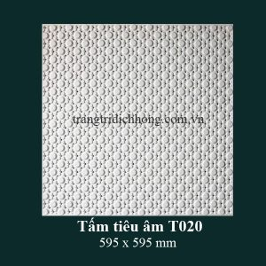 tam-tieu-am-t020-595x595mm