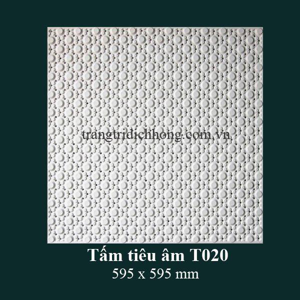 tam-tieu-am-t020-595x595mm