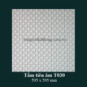 tam-tieu-am-t030-595x595mm