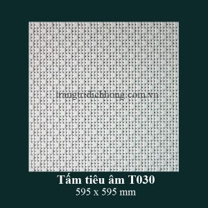 tam-tieu-am-t030-595x595mm